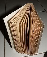 Un livre peut nous initier dans Leçons de vie livre1